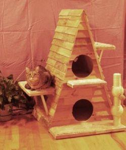 Cozy cat cabin
